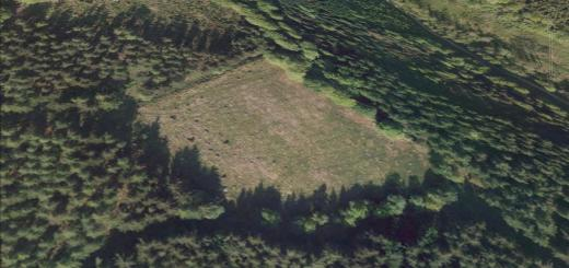 Plainsfield Camp Hillfort, Over Stowey, Somerset