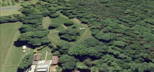 Taps Combe Camp Hillfort, Somerset