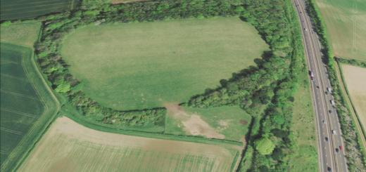 Tidbury Ring Hillfort, Hampshire