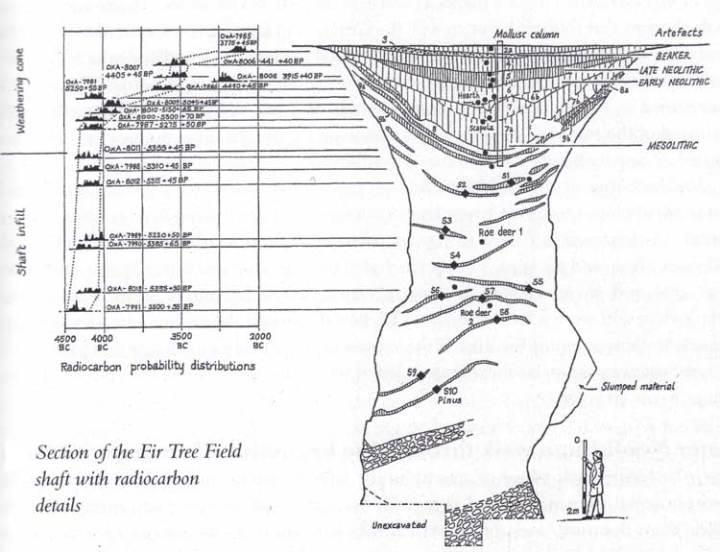 Image 04 - The Fir Tree Field Shaft section plan.