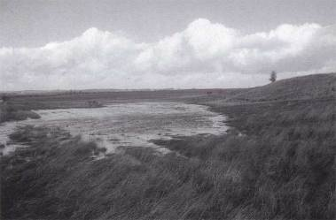 Image 5 - This ancient river cliff and seasonal lake were deliberately enclosed by the earthwork of the Cursus as it descended into the Allen Valley. Image © Martin Green.