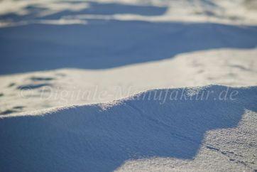 Winterlandschaft-53