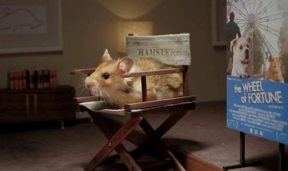 Hamster Hank- Episode 2