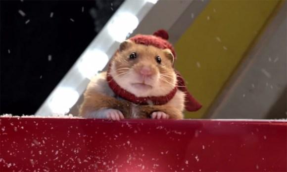 Hamster Hank- Weihnachten