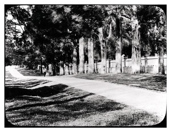 'Cedar Avenue W.S. NC'