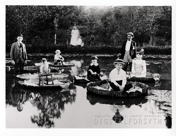 Dr. Bahnson's Lily Pond - Lot 9
