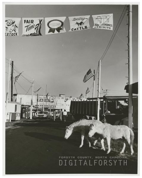 Fairgrounds at the Dixie Classic Fair, 1963.