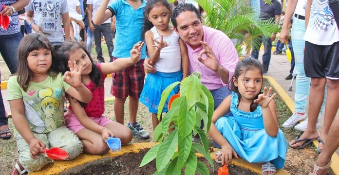 reforestación_arboles_acapulco (2)