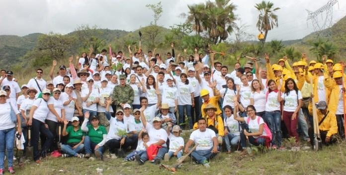 reforestación_guerrero_semaren (2)