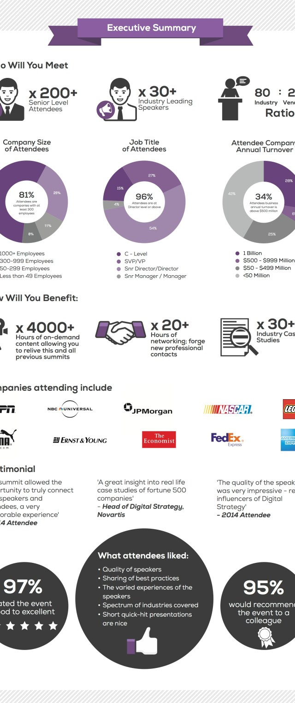 Digital Summary Executive2