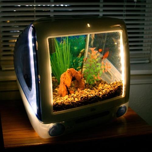 Mac Aquarium