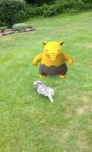 pokemon on grass