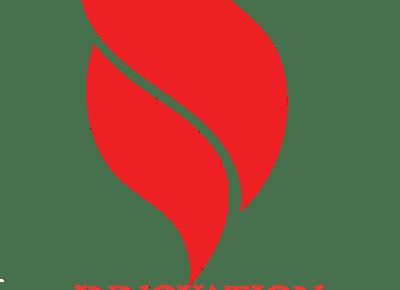 logo21503901887