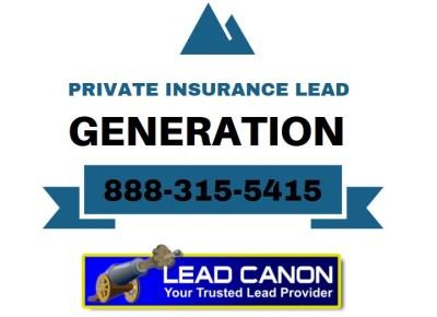 `Privateinsuranceleadsgenerationservicecompanyppopaindiabeticbackbraceknee1539100988