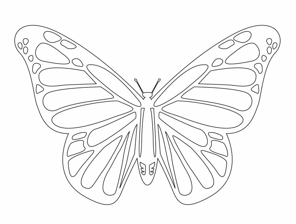 Free Butterfly Patterns Printable Template