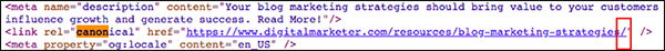 code showing canonical tag
