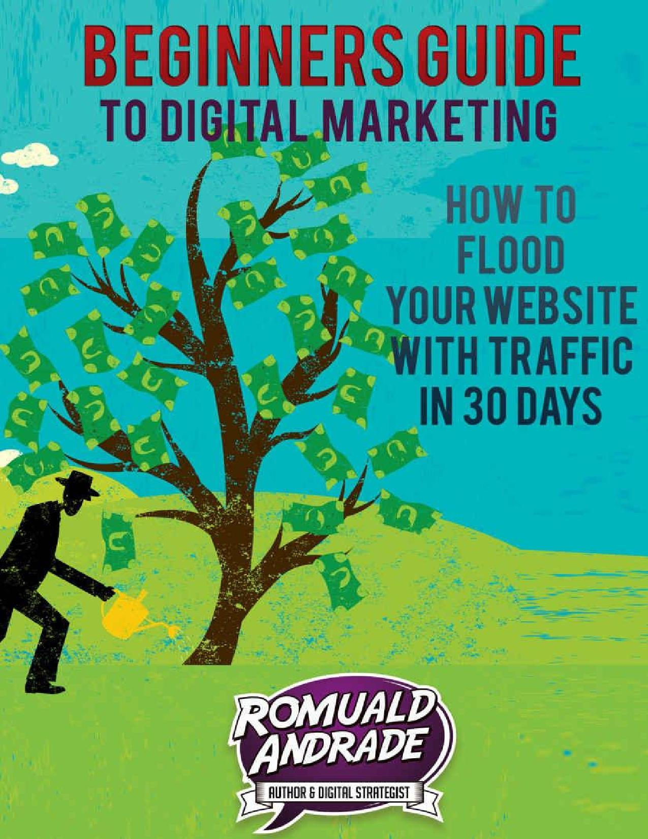 Beginners Guide To Digital Marketing - How to Flood Your Website With Traffic In 30 Days