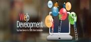 Custom Website Designing Can do Wonders for Establishing Your Business