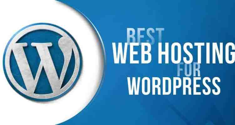 wordpress web hosting and designing south africa