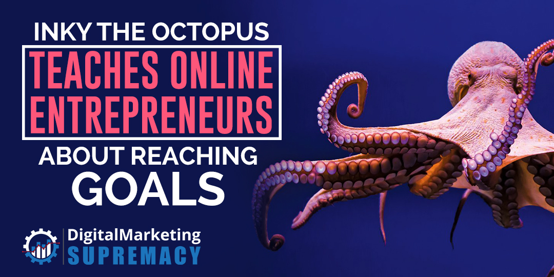 Inky the Octopus Teaches Online Entrepreneurs about Reaching Goals