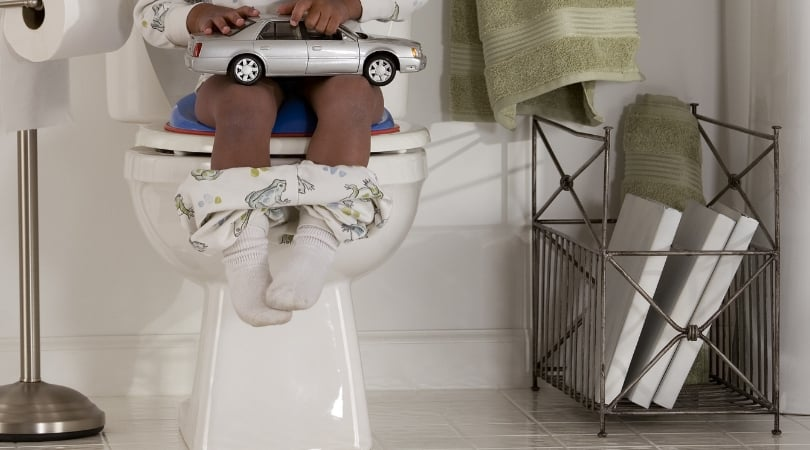 picture of a potty for potty training