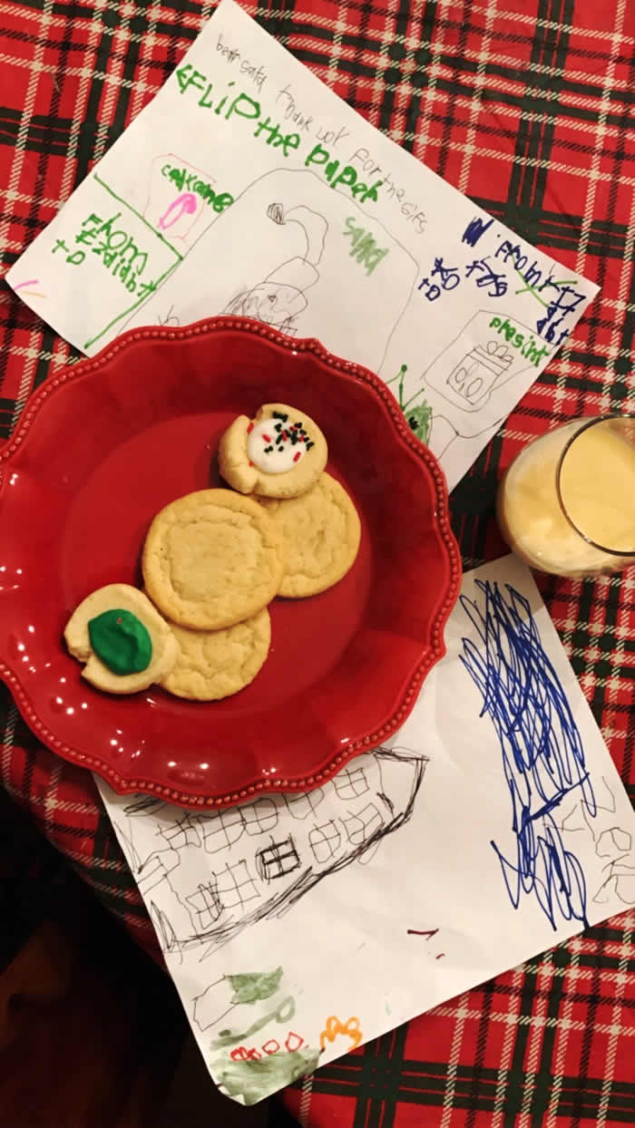 Cookies for Santa Claus and egg nog