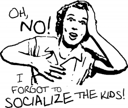 home school and socialization