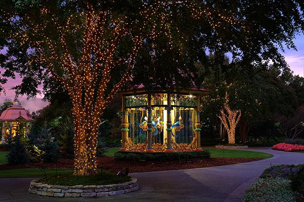 dallas arboretum - christmas family dallas