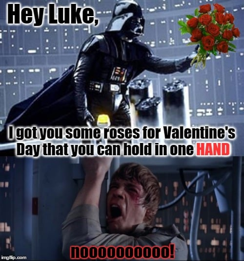 Hey Luke I got you some roses for valentine's day that you can hold in one hand. noo darth vadar, luke skywalker star wars valentines