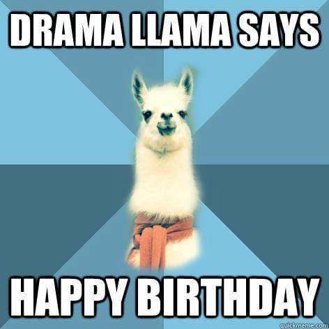 drama llama birthday meme