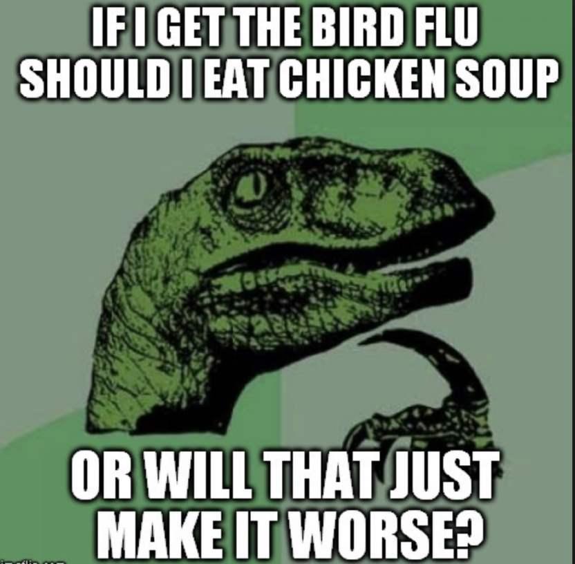 bird-flu-meme
