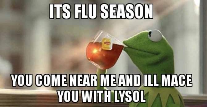 Kermit Meme Flu Season