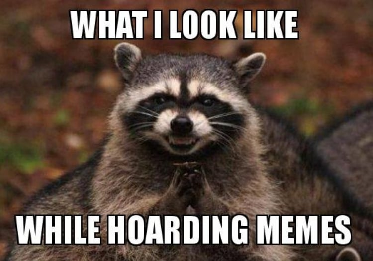 What I look like while hoarding memes.