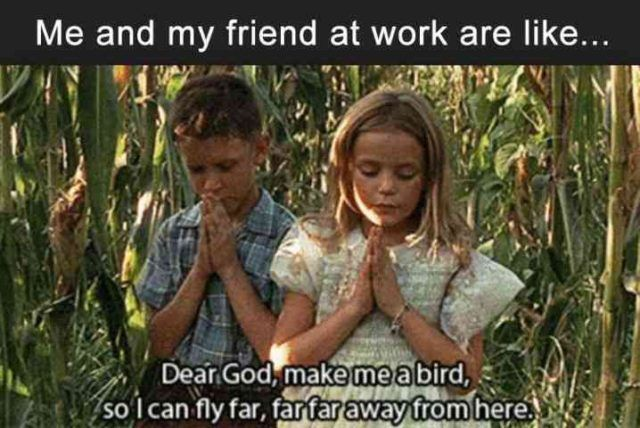 """Me and my friend at work are like """"Dear God, make me a bird so I can fly far far far away from here."""""""