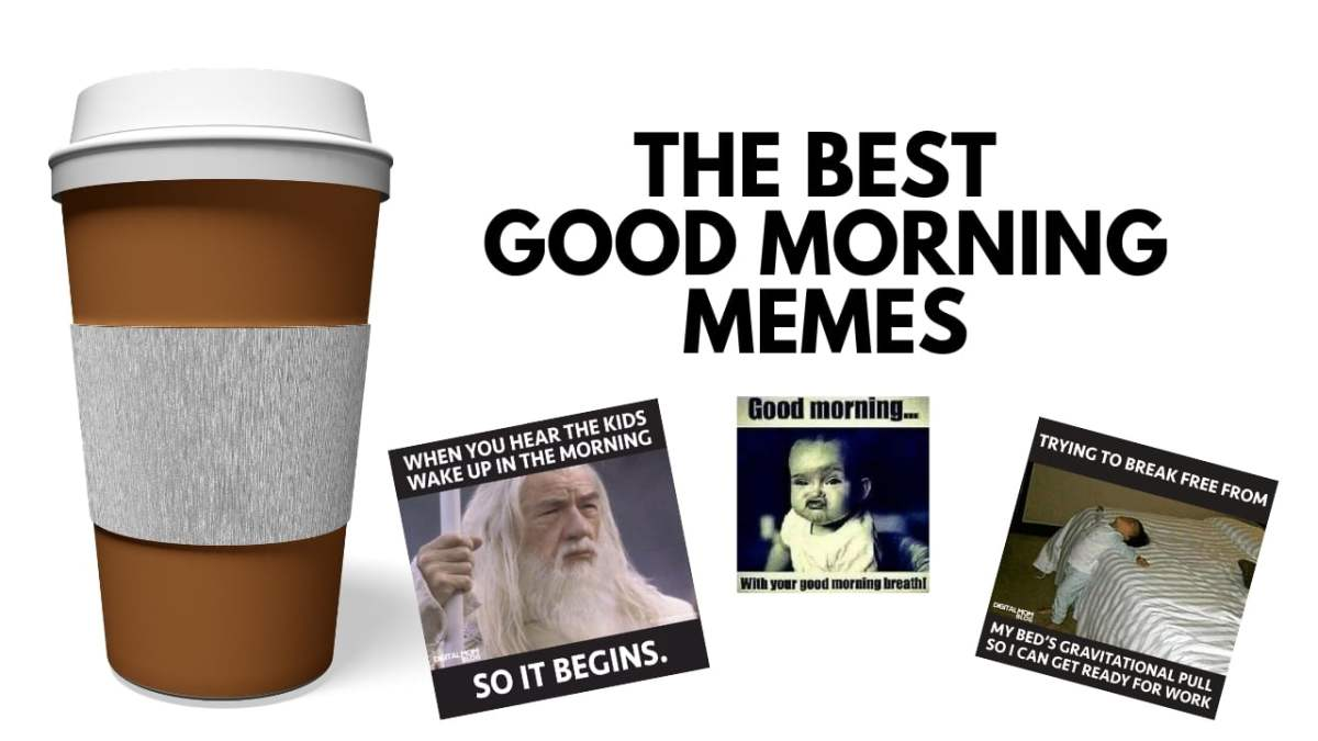 The Best Funny Good Morning Memes To Start Your Day With a Smile!