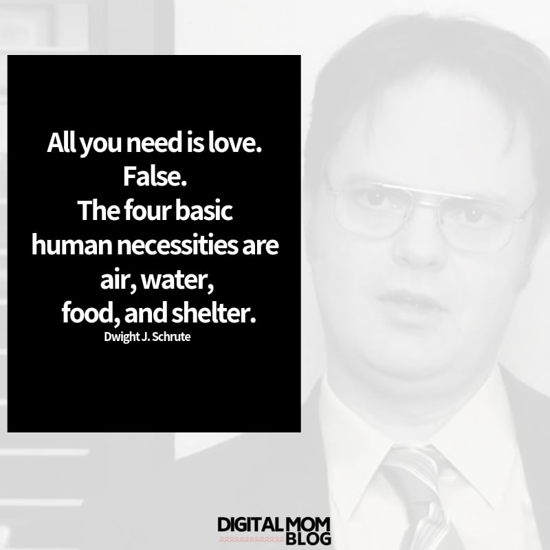 All you need is love. False. The four basic human necessities are air, water, food, and shelter. - Dwight Schrute Quote