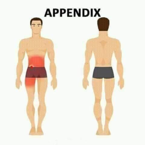 appendix pain