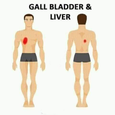 gall bladder and liver pain