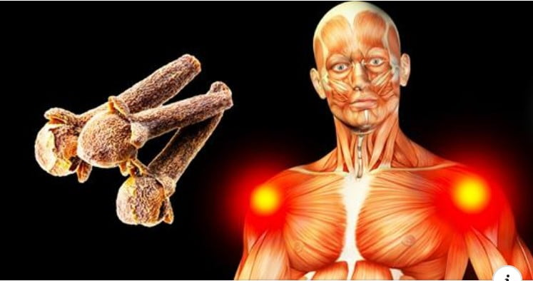 These Things Will Happen If You Eat 2 Cloves a Day