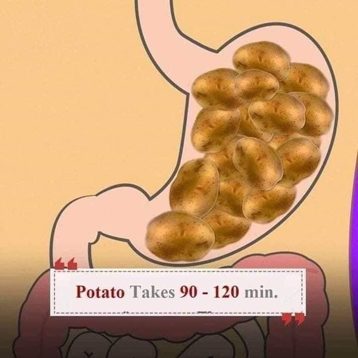digestive health tips