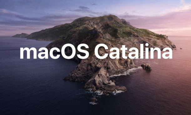 macos catalina beta version download