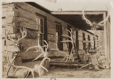 Elkhorn Ranch in Dakota Territory c. 1884 Antlers outside TR's ranch in the Badlands