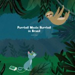 An Interview with Anne Zoet, Author of Purrball Meets Burrball in Brazil