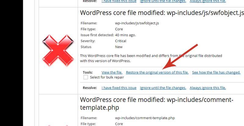 Wordpress Malware Scan Results