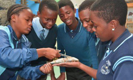 uShaka Sea World during National Science Week