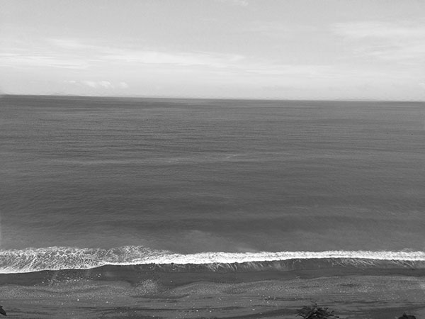 A135A_20140129_photo_black-and-white_2