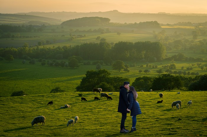 Couple kissing in pasture