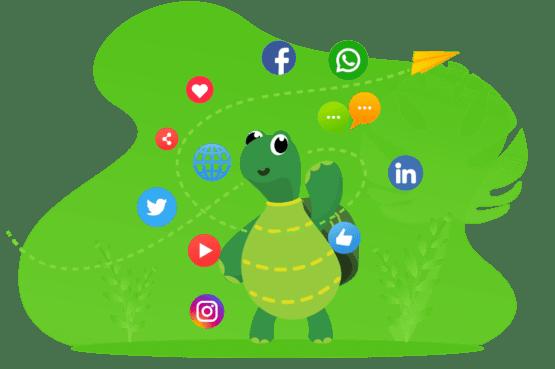 Digital Marketing Services | Digiturle Marketing