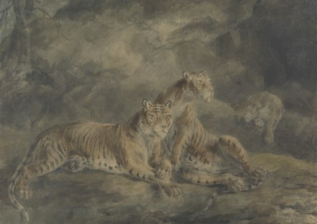 Sawrey Gilpin (1733–1807), Three Tigers in a Rocky Landscape