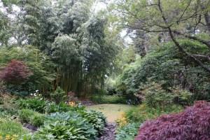 Finnerty Gardens, University of Victoria